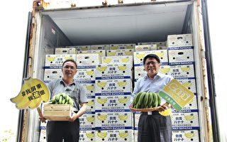 屏东香蕉攻日本市场 估年销100公吨