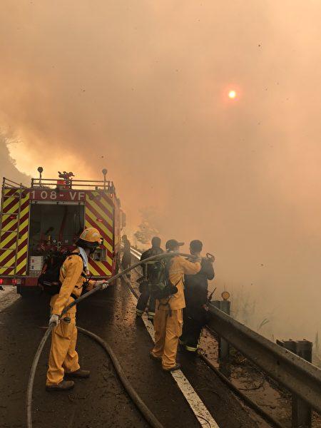 林管处森林护管员及嘉义县政府消防局19日清晨撒水灌救。
