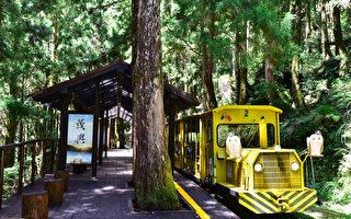 台儿童节连假 13处森林游乐区12岁以下免费