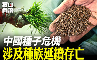 【有冇搞錯】中國種子危機 涉及種族延續存亡