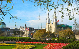 加拿大荣登2021年全球最佳国家榜首