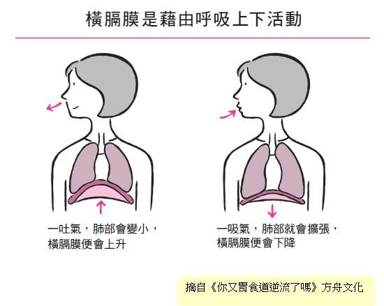 将注意力放在横膈膜上,好好地深呼吸,可以锻炼横隔膜,改善胃食道逆流症状。(方舟文化提供)