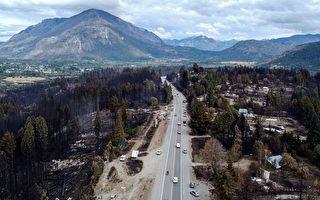组图:阿根廷森林大火后 民众准备重建家园