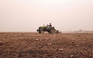 大陸北方再現沙塵天氣 內蒙古甘肅現沙塵暴