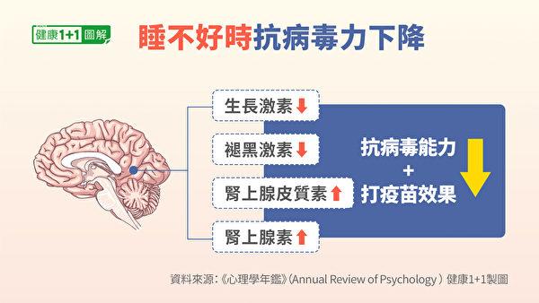 在睡眠時,起負面作用的激素會減少。(健康1+1/大紀元)