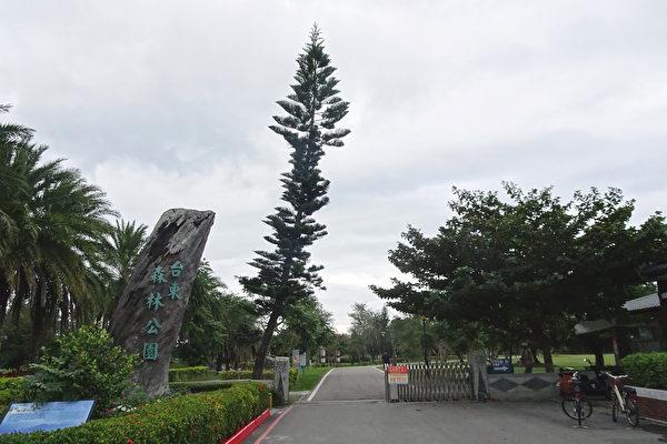 享受大自然療癒能量 台東森林公園逍遙遊