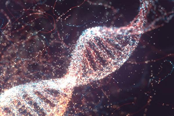 新技术看到微观下DNA前所未见细节