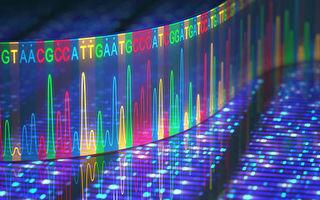 人體基因組研究二十年來碰壁多於突破?
