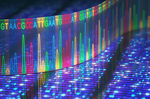 人体基因组研究二十年来碰壁多于突破?