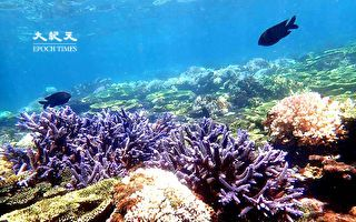 離島旅遊偽出國  今年你想去哪兒?