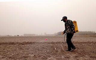 全球有64%农地遭农药污染 中国最严重