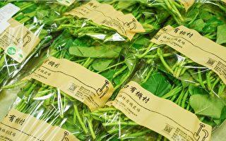 有機農產品進軍林口三井 打造黃金品牌