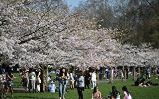 组图:英封锁限制放松 民众户外享受春光明媚