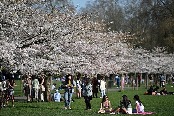 組圖:英封鎖限制放鬆 民眾戶外享受春光明媚