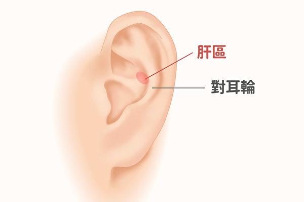 耳部肝區如果出現多個片狀隆起,並伴有結節、界線不清,顏色灰暗或發黑,壓痛明顯,多為肝癌。(Shutterstock/大紀元製圖)