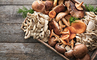 研究:蘑菇有效補充微量元素又不致發胖