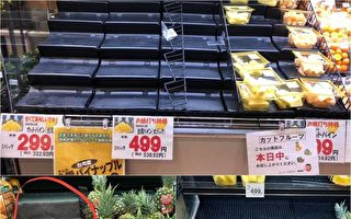 急寻台湾凤梨 日本超市洽询应接不暇