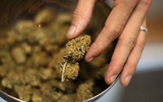 大麻合法青少年条款遭反对 新泽西州定新法修正
