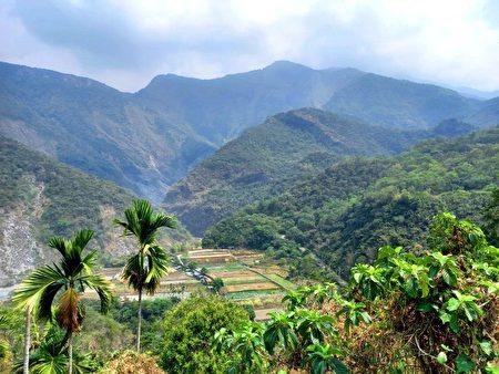 多纳部落后山的耕地。