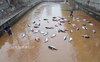 曝山东水污染 微信公众号遭6步撤稿威胁