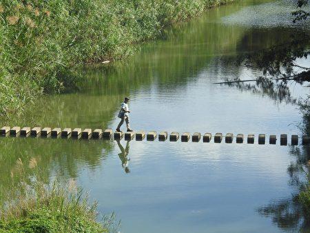 羅功奇運用攝影專長,在工作之餘也參與鄉土協會的田野調查、編輯「牛欄河畔」季刊等工作。