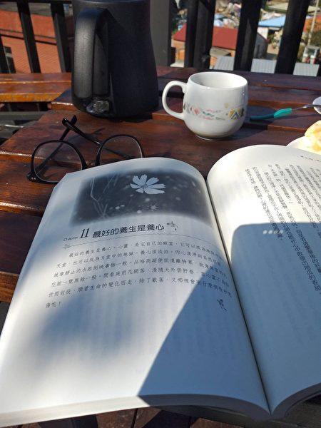 樹下喝茶看書,享受悠閒午後。
