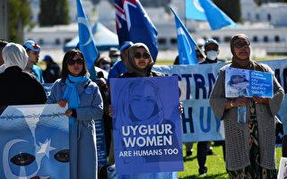 新疆問題受壓後 中共瞄準海外維吾爾人和學者