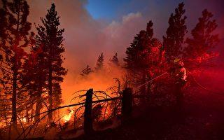 加州考虑拨款5亿提早行动防野火