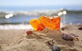 来自波罗的海琥珀或成对抗抗药性细菌新药