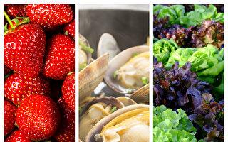 13種過期食物不能吃 引發健康問題