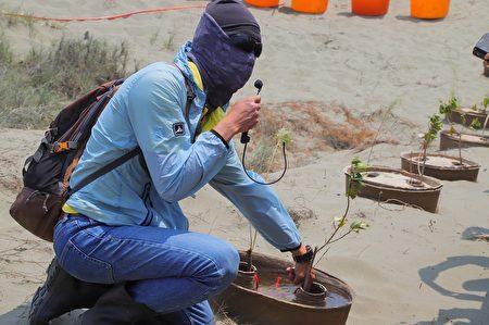 慈心基金會種樹專員劉建福示範如何以水寶盆幫助樹苗在沙洲環境中順利成長。