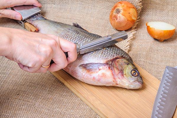 魚類冷凍前一定要先經過仔細的清洗。先將魚身上殘留的鱗片再仔細刮除。(Shutterstock)