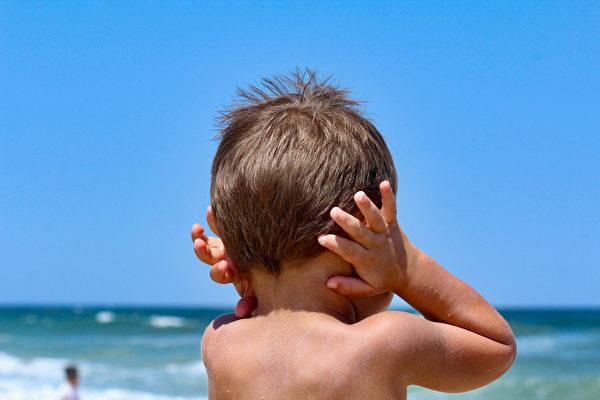 噪音研究發現:2020年是海洋「安靜年」