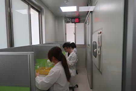 闻臭师分组进行异味官能测定中。