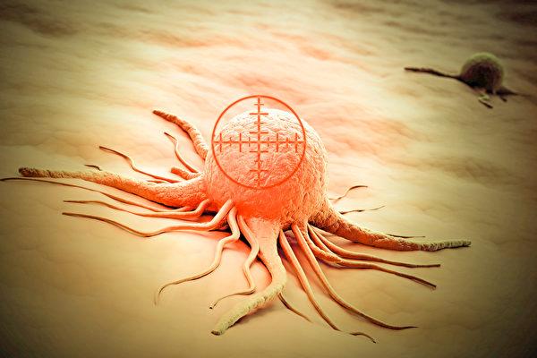 人人體內都有癌細胞,但不一定會形成癌症。(Shutterstock)