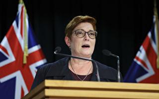 澳外长:年底拟出台马格尼茨基人权问责法
