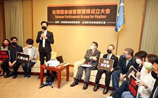 与新疆并肩抗共 台国会成立维吾尔连线