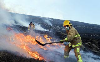 組圖:英國多納德山大火 出動逾百名消防員