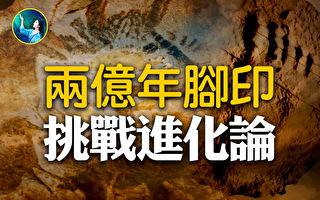 【未解之谜】史前壁画两亿年脚印 挑战进化论