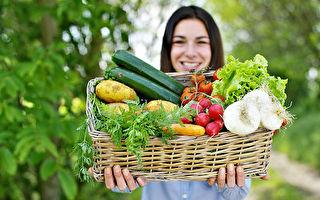 爱城社区花园 丰富自己的餐桌