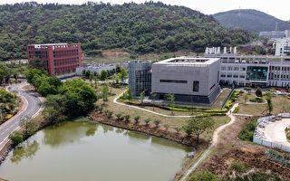 蓬佩奥和保罗议员警告:武汉实验室仍在运作