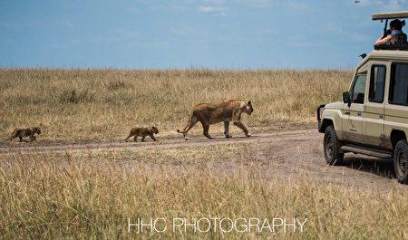 行行摄摄看世界, 非洲