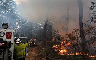 消防局減災燒荒 悉尼週末將出現煙霧天