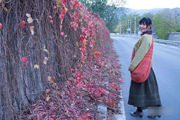 北京画家等11人被非法起诉 律师谴责中共