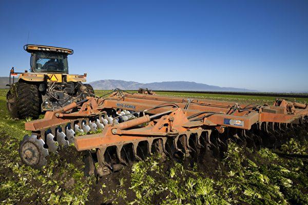 培养新农民 罗格斯大学开设初级农业培训课程