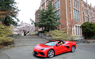 車評:2.9秒的衝擊 2021 Chevrolet Corvette Stingray 2LT