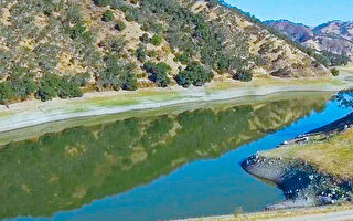 李卡多反對帕切科大壩興建 恐影響該計畫進行