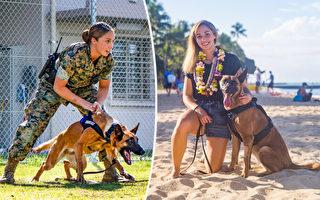 美國海軍陸戰隊女兵收養受傷後退役的軍犬