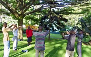 《转法轮》在非洲流传 人们奔走相告传福音