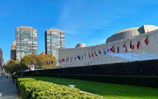 杨威:联合国成中共争霸战场透国际危局
